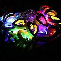 ZheJia 木製ラブハートフェアリーライト クリスマスバレンタインデーウェディングガーデンベッドルームフェスティバル誕生日パーティーの装飾 バッテリー式装飾ストリングランプ 10個のLEDライト Color