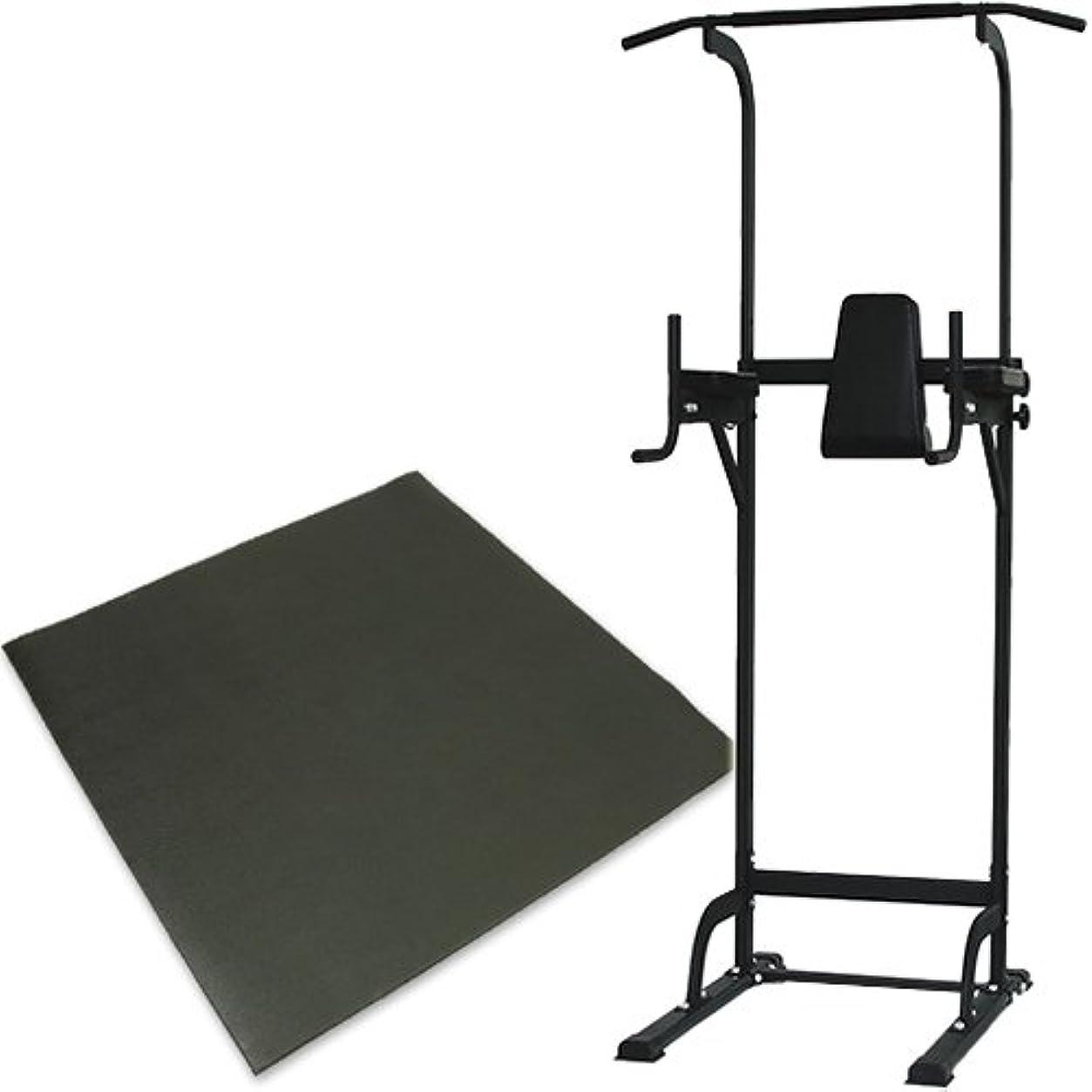 悲惨再生的住所リーディングエッジ ホームジム ST 保護マットセット 懸垂器具 腹筋 腕立て運動可能 マルチジム LE-VKR02