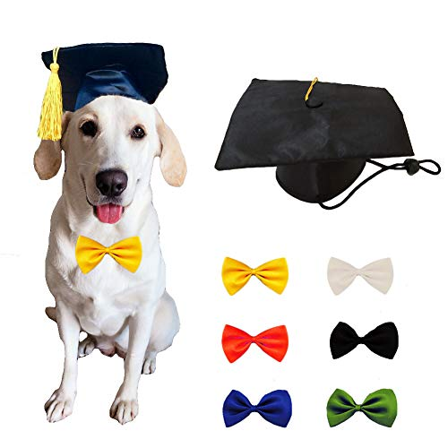 Yu-Xiang Dog Graduation Hat with 6 Pcs Bowties Pet Doctor Cap with Yellow Tassel Small Dog Funny Headwear for Party Halloween Cosplay (Hat+6 Bowties) Review