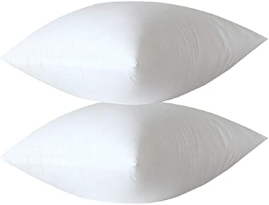 """GENERIC BRANDS Pillows Insert Bed and Couch Pillows Indoor Decorative Pillows,18"""" L x 18"""" W, Set of 2"""