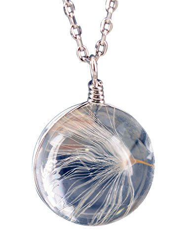 NicoWerk PREMIUM Damen Silberanhänger inkl. Kette aus 925 Sterling Silber - Schmuck - Designed in Germany - Anhänger mit echter Pusteblume in einer Glaskugel - Inkl. Geschenkverpackung SKE258