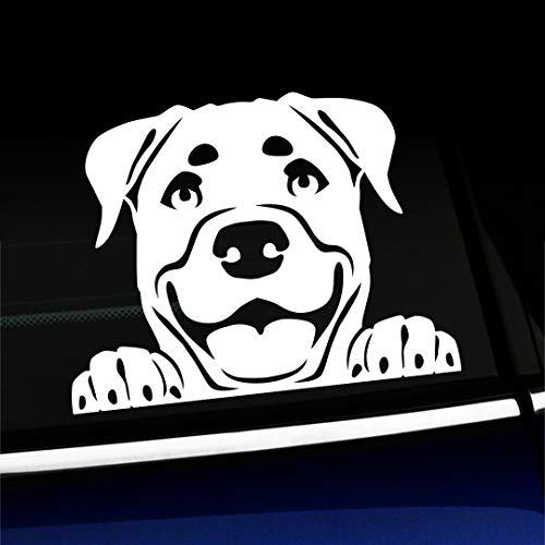 Artistic Reflection Peeking Rottweiler - Vinyl Car Decal - Choose Color - [White]
