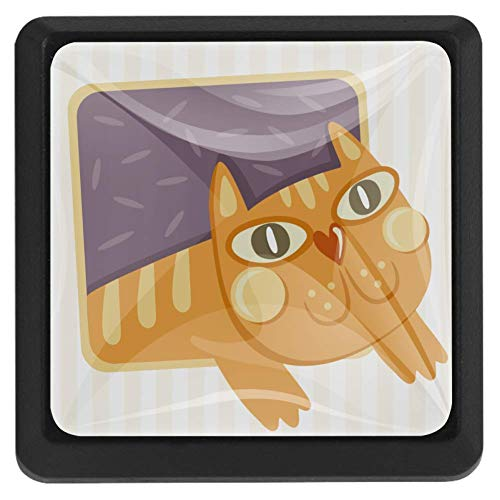 Vierkante ladeknoppen, 3 pakketten 37mm Trekhendels met schattige handgetekende kat lange staart, gebruikt voor slaapkamer dressoir deur kast keuken Modern design 37x25x17mm/1.45x0.98x0.66in Schattige handgetekende kat wil uit