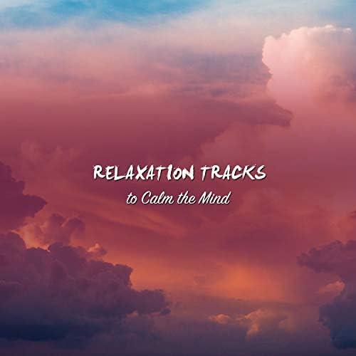 Meditation Music Club, Meditation and Stress Relief Therapy, Sleep Meditation Dream Catcher