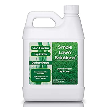 Simple Lawn Solutions - Liquid Iron Darker Green - Chelated Micronutrients - Concentrated Booster for Lawn Indoor Plants and Outdoor Garden  32 Ounce