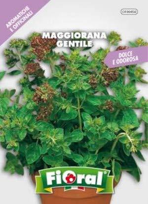 Sementi di piante aromatiche e officinali in bustina ad uso amatoriale (MAGGIORANA GENTILE)