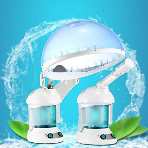 YRYBZ 2 In 1 Hair & Facial Steamer Facial Sauna, Ozone Et Vapeur Facial Steamer Sprayer Facial Steamer Salon Spa Machine De Traitement De La Vapeur Pour Le Visage/A