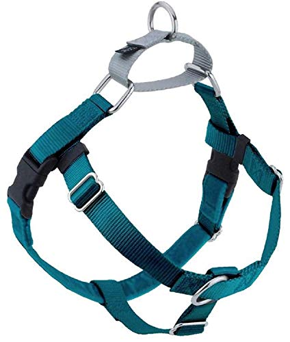 2 Hounds Design Freedom No-Pull No Leash Harness Only, 1-Inch, Medium, Teal