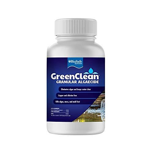 GreenClean Granular Algaecide - 2.5 lbs (Case of 12) - String Algae Control for Koi Pond, Fountain, Waterfall, Water Features on Contact. EPA Registered. Safe for Fish, Plants, Pets and Wildlife.