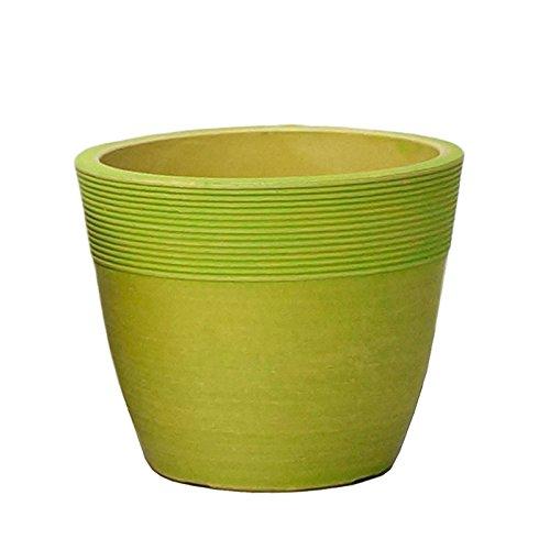 【Planterior】 ハイドロカルチャーに の鉢 ストーンウッドポット M 各色 (ライトグリーン)