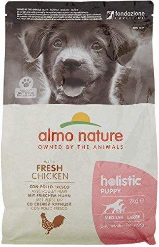 almo nature Holistic Hundefutter, Puppy, Medium Dog, Huhn und Reis (2 kg)