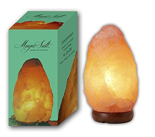HemingWeigh - Lampe en sel de roche naturel de l'Himalaya avec socle en bois/câble d'alimentation/ampoule (2,72à3,17kg)