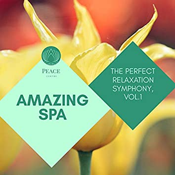 Amazing Spa - The Perfect Relaxation Symphony, Vol.1
