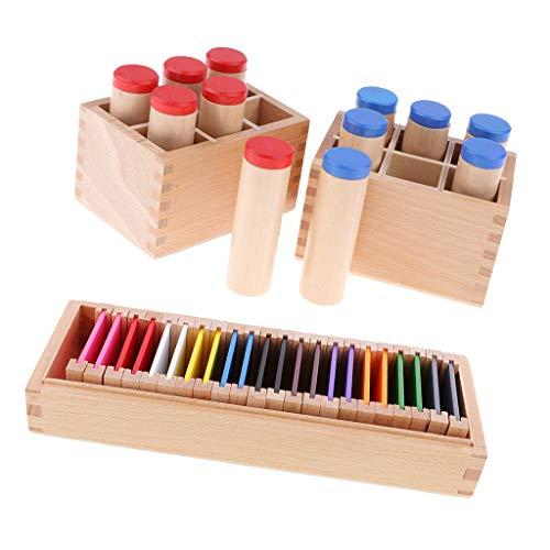 CUTICATE Montessori Sensorial Sound Toy Box Learn Color Box Kids