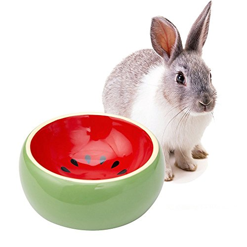Mkono No-Tip Ceramic Rabbit Food Bowl Feeder for Guinea Pig, Watermelon
