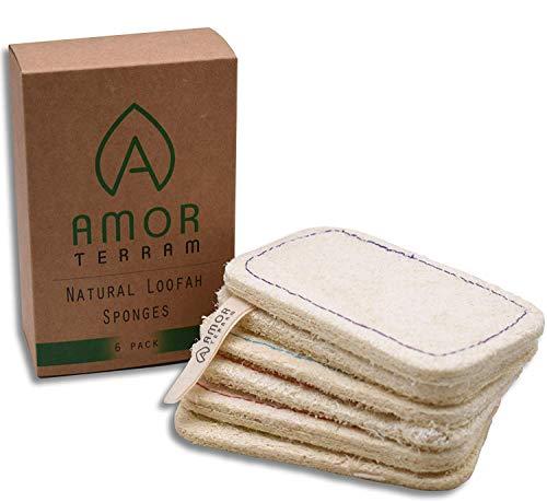Amor Terram Paquete de 6 esponjas naturales de lufa ecológicas, 100% biodegradables, multiusos, alternativa para lavar platos, estropajo, accesorio de cocina cero residuos