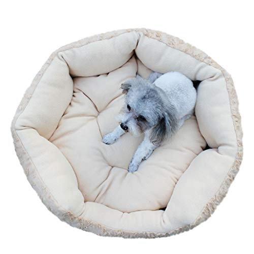 Dasuy Pet Bed Round Machine Washable Memory Foam Cushion Soft Plush Pet Sleep Bed Washable for Cats and Small Dogs (Yellow, M)