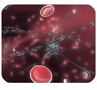 ニューロンおよび赤血球おしゃれ防傷マウスパッドパーソナライズカスタムおしゃれ防傷マウスパッド長方形のゲーミングおしゃれ防傷マウスパッド/マット