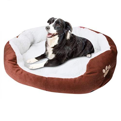 Bumplebee Hundebett Waschbar Orthopaedic Memory Plüsch Warm Weiche Hundesofa für Kleine Mittlere Grosse Hunde und Katzen (Kaffee, 50 x 40cm)