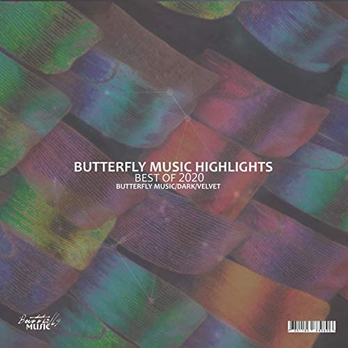 Butterfly Music Highlights