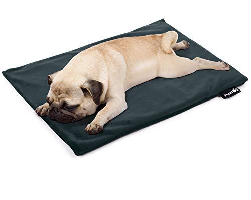 ペキュート Pecute ペット用 ホットカーペット 厚手 猫 犬用 ヒーターマット ペットカーペット Mサイズ 50×40cm カバー2枚付き 過熱保護 噛み付き防止 一年メーカー保証 …