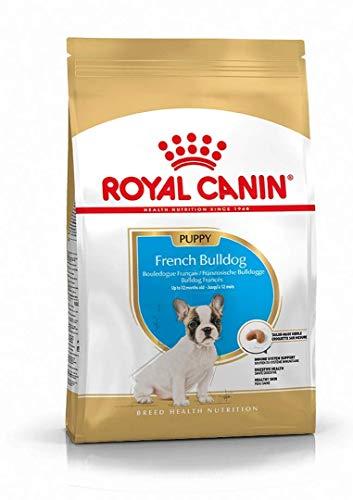 Royal Canin C-09008 Bulldog Frances Puppy - 10 Kg