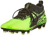 Puma One 19.2 FG/AG, Zapatillas de Fútbol Hombre, Verde (Green Gecko Black-Charcoal Gray), 41 EU
