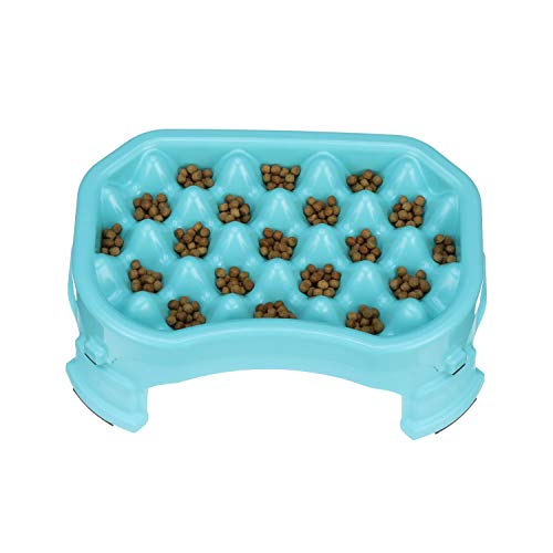 Neater Pet Brands – Neater Raised Slow Feeder Dog Bowl – Elevated and Adjustable Food Height - (2.5 Cup, Aquamarine)