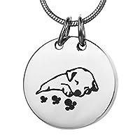 XIXI 2色、ペット火葬ネックレスのために灰壷ジュエリーステンレス鋼ラウンド犬猫記念品記念壺ペンダントロケット メモリアル用品 (Metal Color : Silver)