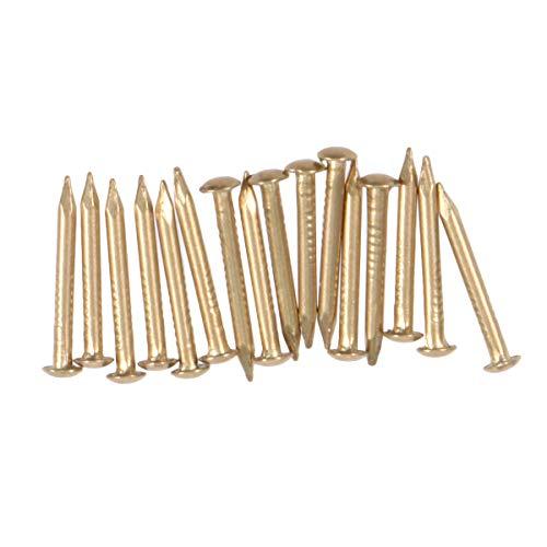 Yardwe Kupfernägel 100pcs für das Töten der Baum-Stumpf-Abbau-Spitzen