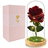 Beferr Beauty and The Beast Rose Enchanted Flower with LED Light in Glass Dome for Christmas Valentine's Day Mother's Day Birthday Best Gifts for Girlfriend Wife Women Her - Red
