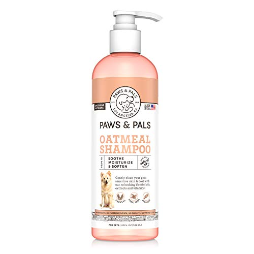 Paws & Pals 5-In-1 Oatmeal Dog Shampoo, Conditions, Detangles, Moisturizes, Anti Itch, Odor Control - Made in USA w/Medicated Clinical Vet Formula - Best for Dog, Cat & Pets w/ Dry Itchy Skin | 20 oz