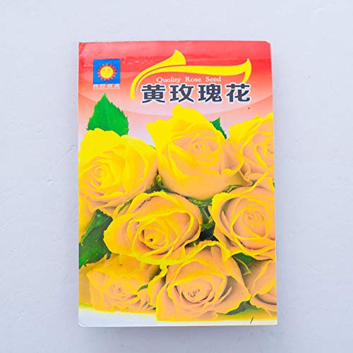 B/H Rare graines de Multicolor,Rose Seed Flower Balcony Indoor Potted Flower Seed-Yellow_10,vivaces graines Fleurs ornementales