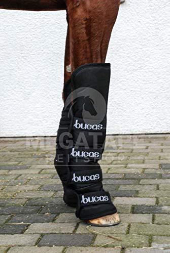 Bucas 2000 Boots, Transportgamaschen, Warmblut, Navy/Navy