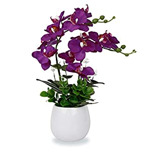 LIVILAN Fake Orchid Purple Orchid Flower Silk Phalaenopsis Real Touch Flowers Artificial Flowers Arrangement Potted Orchid 12 Head with Two Stems Plant Home Table Party Decor