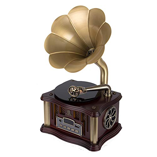 Ritioner-8831C Mini Grammofono BT4.2 Lettore USB a Doppio Binario Radio FM Telecomando Fonografo con Due Altoparlanti HiFi (Noce)