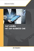 SAP Lumira mit SAP Business One