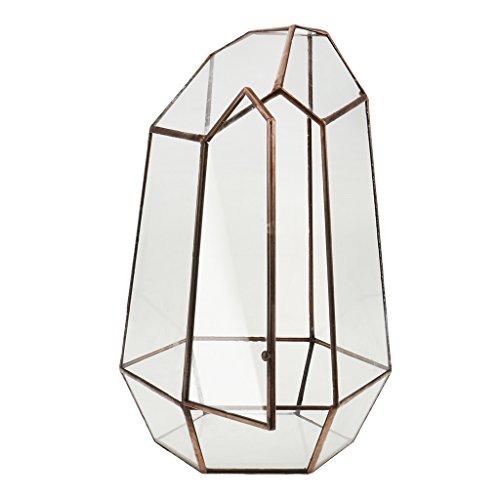 Fenteer Boîte Terrarium en Verre Transparent Maison Serre de Table pour Plante Micropaysage Bijoux Organisateur Décoration Fête - Cuivre 6, 12 x 12 x 19cm