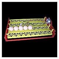 ペット用ヒーター 36卵の自動インキュベータは、卵トレイ鶏キジトレイDIYのインキュベーター実験教育機器の電源を入れ 保温