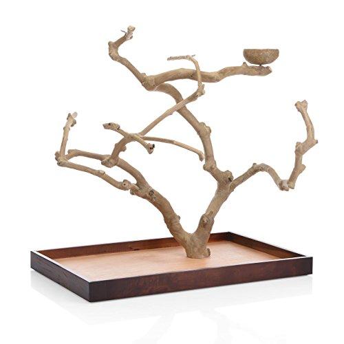 Wagner's | Java Tree Tischfreisitz aus Kaffeeholz für Großsittiche & Papageien