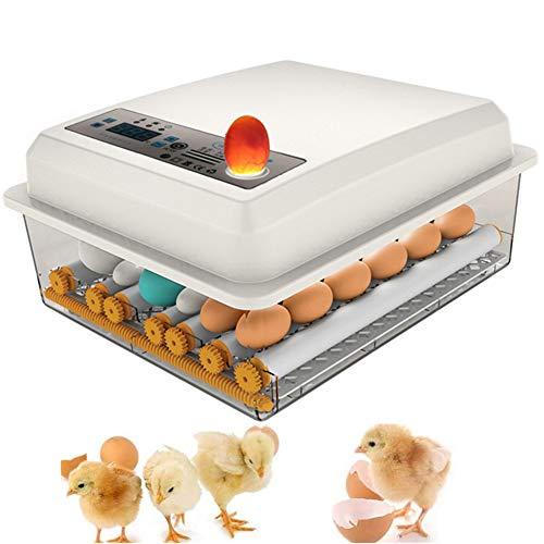 16 Eier Brutmaschine Vollautomatisch Inkubator Hühner Digitales Automatische Ei-Inkubator Intelligent Brutautomat Motorbrüter für Huhn Enten Gänse Geflügel Taube Wachtel Eierbrutmaschine