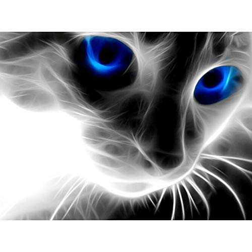 5D Diy Blauwe Ogen Kat Diamant Schilderij Strass Kit Woonkamer Schilderij(11.8x15.8inch)