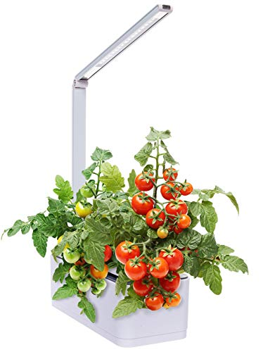 Hydroponic Indoor Herb Garden Kit - Multispectrum LED Desktop Growing Lamp Mindful...