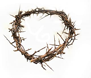 Crown of Thorns From The Holy Land 7