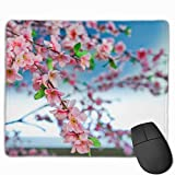 マウスパッド オフィス 最適 桜 写真 春 花見 庭園 ゲーミング 光学式マウス対応 防水性 耐久性 滑り止め 多機能 標準サイズ25cm×30cm