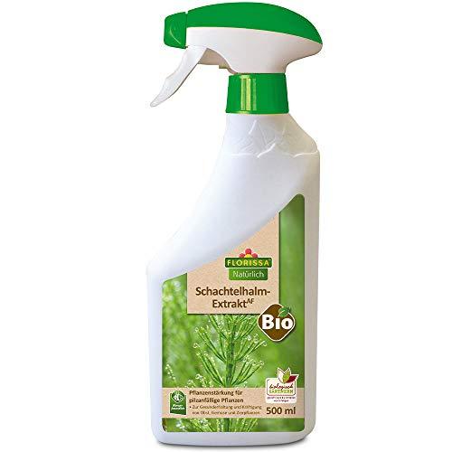 Florissa Natürlich Bio Schachtelhalm Extrakt   zur Vorbeugung von Pilzbefall bei Obst, Gemüse und Zierpflanzen   vorbeugend gegen Mehltau, Sternrußtau, Schorf, Grauschimmel, Krautfäule, Farblos