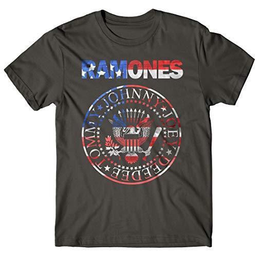 LaMAGLIERIA Camiseta Hombre Ramones - USA Flag - t-Shirt Punk Rock Band 100% algodón, L, Gris