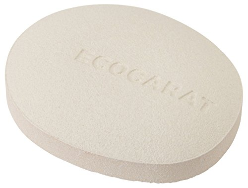 マーナ(MARNA) エコカラット ドライキーパー ホワイト 塩・砂糖調湿 さらさら 多孔質セラミック K685W