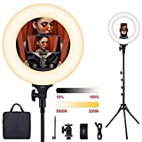 ESDDI 13inch Bicolor LED Ring Light with Stand Tripod and Phone Holder, Carrying Bag Dimmable Brightness 3200K-5600K for YouTube Vlog Makeup Portrait Shooting