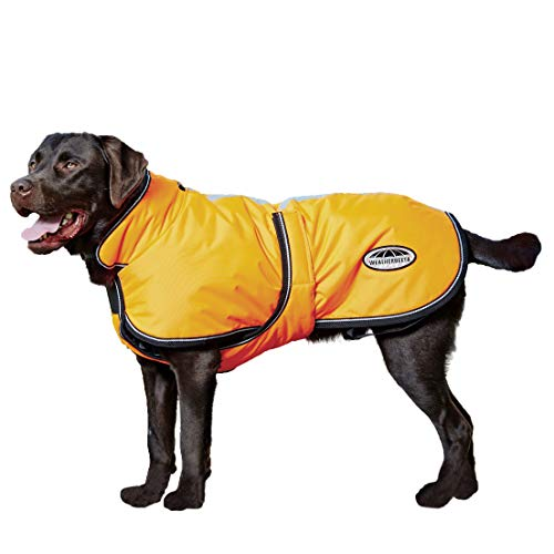 """Weatherbeeta Comfitec - Reflective Dog Parka Coat 300D Deluxe, Light Weight & High Visibility Water-Resistant Dog Vest, Ideal for Off-Leash Walking or Hunting, Orange 16"""""""